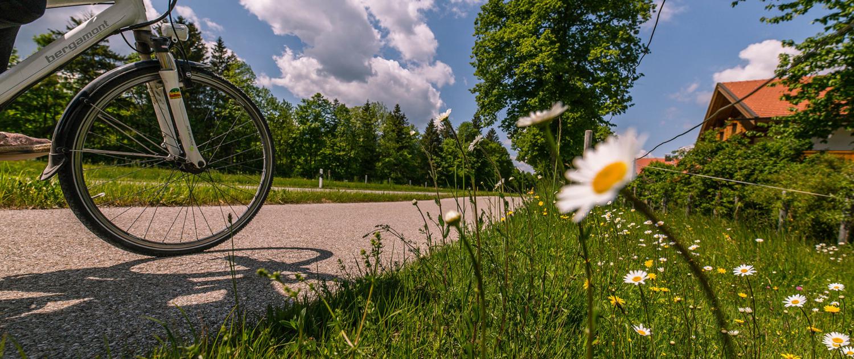 Fahrradtour nach Norden